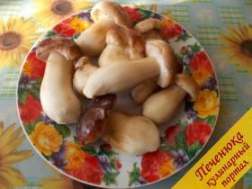 Белые грибы в горшочке с картошкой рецепт 162